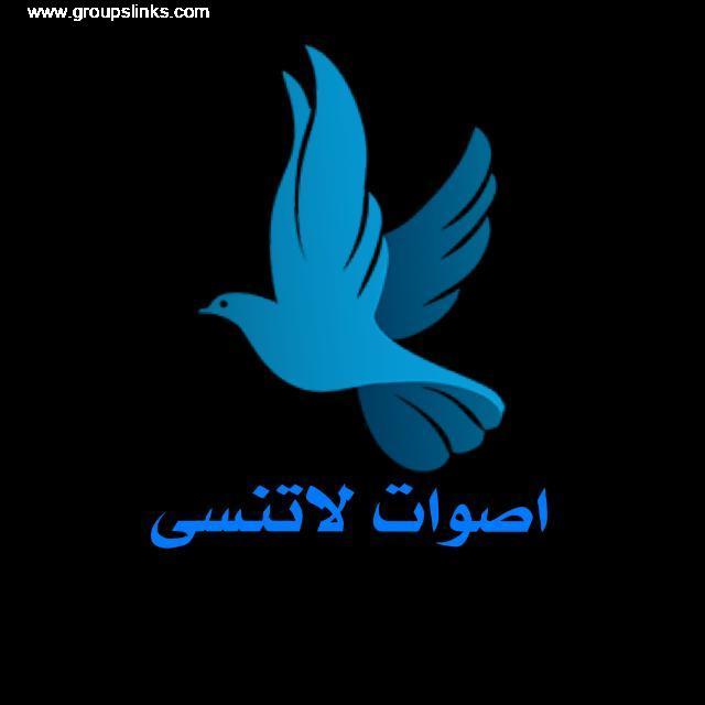اغاني يمنيه،حالات واتس اب يمنيه